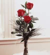 Gaziantep güvenli kaliteli hızlı çiçek  Vazoda 3 adet güzel gül