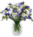 Gaziantep çiçekçiler  Vazoda karisik özel frezyalar
