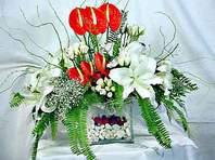 Gaziantep çiçekçi mağazası  Anthurim Kazablanka  gül
