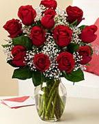 Sevgilime hediye 9 adet 1.ci kalite gül  Gaziantep çiçek satışı