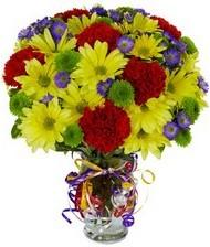 En güzel hediye karışık mevsim çiçeği  Gaziantep çiçek servisi , çiçekçi adresleri