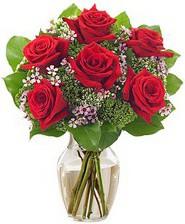 Kız arkadaşıma hediye 6 kırmızı gül  Gaziantep online çiçekçi , çiçek siparişi