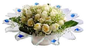 Gaziantep ucuz çiçek gönder  11 adet Beyaz güller özel cam tanzim