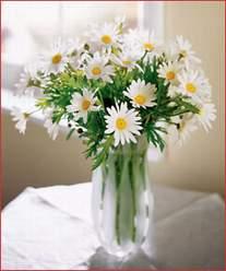 Gaziantep çiçek mağazası , çiçekçi adresleri  Cam vazoda dag papatyasi