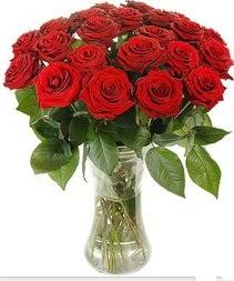 Gaziantep çiçekçi mağazası  Vazoda 15 adet kırmızı gül tanzimi