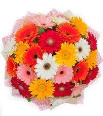 15 adet renkli gerbera buketi  Gaziantep çiçekçiler