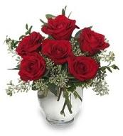 Vazo içerisinde 5 adet kırmızı gül  Gaziantep çiçek mağazası , çiçekçi adresleri