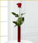 Vazo içerisinde 1 adet kırmızı gül  Gaziantep online çiçekçi , çiçek siparişi