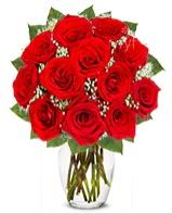 12 adet vazoda kıpkırmızı gül  Gaziantep çiçek gönderme sitemiz güvenlidir