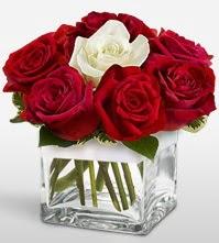 Tek aşkımsın çiçeği 8 kırmızı 1 beyaz gül  Gaziantep çiçek gönderme