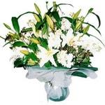 Gaziantep çiçek mağazası , çiçekçi adresleri  Kazablanka ve gerbera demeti