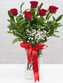 cam vazo içerisinde 5 adet kırmızı gül  Gaziantep çiçek yolla