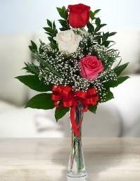 Camda 2 kırmızı 1 beyaz gül  Gaziantep çiçek online çiçek siparişi