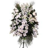 Gaziantep çiçek gönderme sitemiz güvenlidir  Ferforje beyaz renkli kazablanka