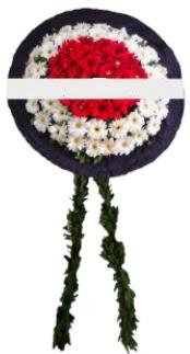 mozele çiçeği  Gaziantep çiçek , çiçekçi , çiçekçilik