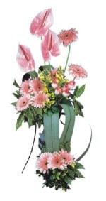 Gaziantep internetten çiçek satışı  Pembe Antoryum Harikalar Rüyasi