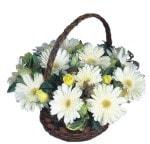 Gaziantep kaliteli taze ve ucuz çiçekler  Sepet içinde  gerbera aranjmani