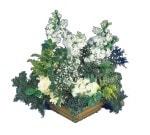 Gaziantep çiçek yolla , çiçek gönder , çiçekçi   Beyaz sebboy ve gül aranjmani