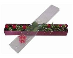 Gaziantep çiçek satışı   6 adet kirmizi gül kutu içinde