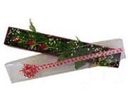 Gaziantep çiçek servisi , çiçekçi adresleri  3 adet gül.kutu yaldizlidir.