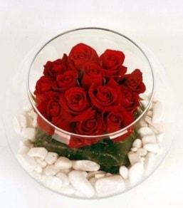 Cam fanusta 11 adet kırmızı gül  Gaziantep uluslararası çiçek gönderme