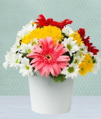 Seramik Vazoda Gelbera ve Papatya  Gaziantep uluslararası çiçek gönderme