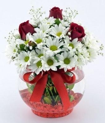 Fanusta 3 Gül ve Papatya  Gaziantep güvenli kaliteli hızlı çiçek