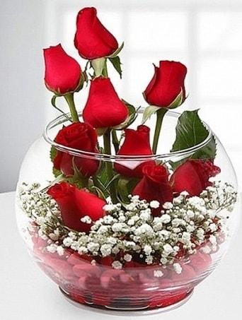 Kırmızı Mutluluk fanusta 9 kırmızı gül  Gaziantep kaliteli taze ve ucuz çiçekler