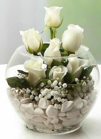 Beyaz Mutluluk 9 beyaz gül fanusta  Gaziantep kaliteli taze ve ucuz çiçekler