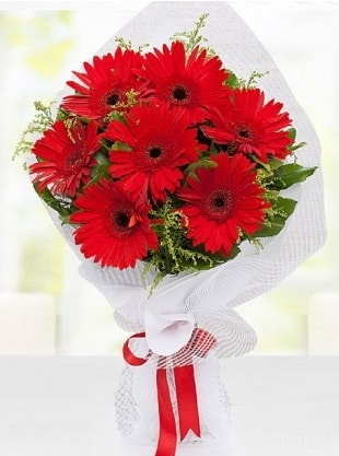 Kırmızı Gelbera Buketi  Gaziantep online çiçekçi , çiçek siparişi