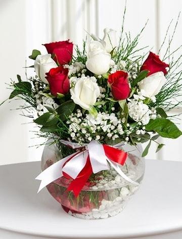 Aşk Küresi  5 beyaz 5 kırmızı gül fanusta  Gaziantep güvenli kaliteli hızlı çiçek