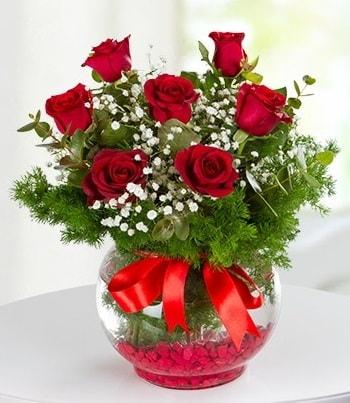 fanus Vazoda 7 Gül  Gaziantep hediye sevgilime hediye çiçek