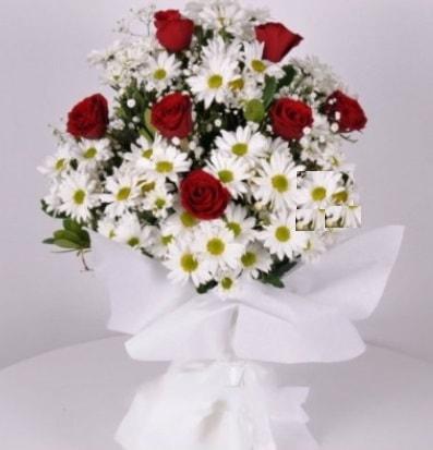 7 adet kırmızı gül ve papatyalar krizantem  Gaziantep güvenli kaliteli hızlı çiçek