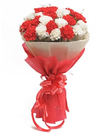 21 adet kırmızı beyaz karanfil buketi  Gaziantep anneler günü çiçek yolla