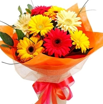 9 adet karışık gerbera buketi  Gaziantep hediye sevgilime hediye çiçek