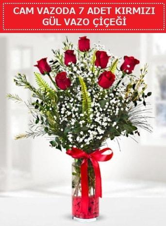 Cam vazoda 7 adet kırmızı gül çiçeği  Gaziantep cicek , cicekci