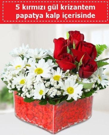 mika kalp içerisinde 5 kırmızı gül papatya  Gaziantep uluslararası çiçek gönderme