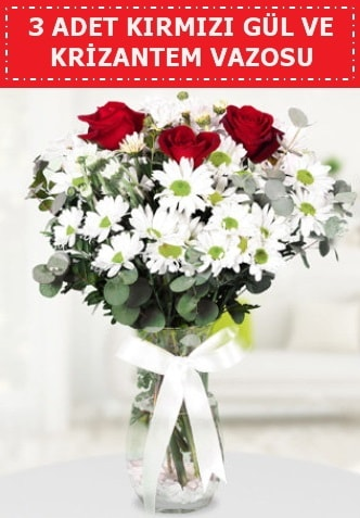 3 kırmızı gül ve camda krizantem çiçekleri  Gaziantep uluslararası çiçek gönderme