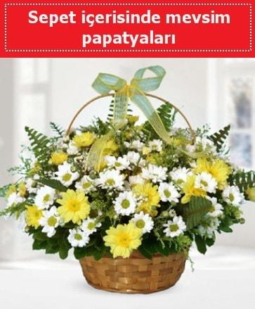 Sepet içerisinde mevsim papatyaları  Gaziantep çiçek online çiçek siparişi