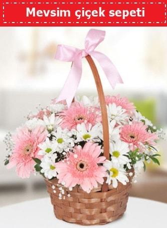 Mevsim kır çiçek sepeti  Gaziantep hediye sevgilime hediye çiçek